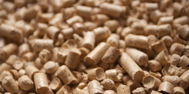 Granulé bois