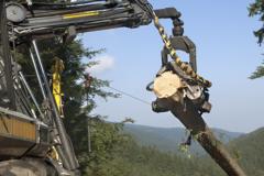 Graisses pour l'industrie du bois
